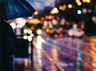 Жалко, и грустно, и противно было глядеть сквозь мутную кисею дождя
